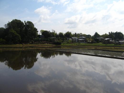 石岡の田園