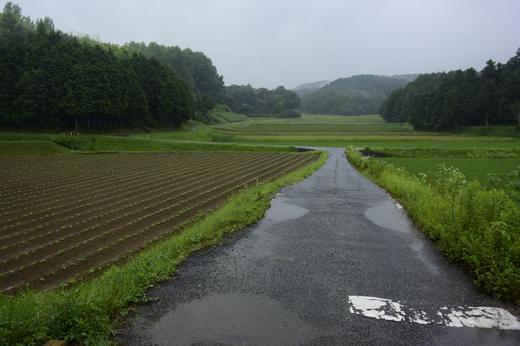 岡山勝間田
