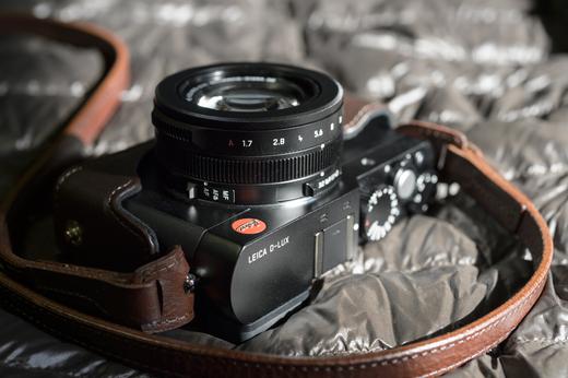 Leica D-LUX + Panasonic 本革ケース DMW-CLX100-T