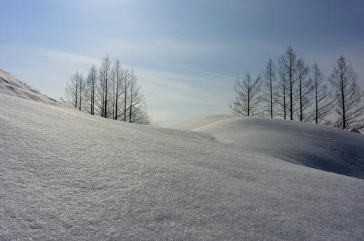 魚沼付近での雪景