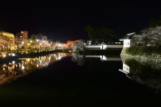 小田原城のお堀のサクラ