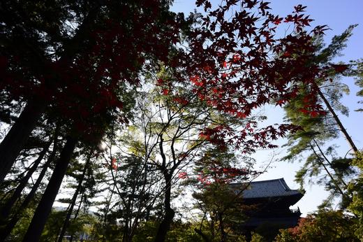 初秋の南禅寺オリジナル