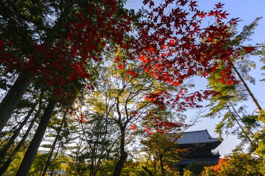 初秋の南禅寺 ピクコン適用