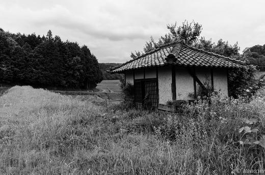 勝間田の田園