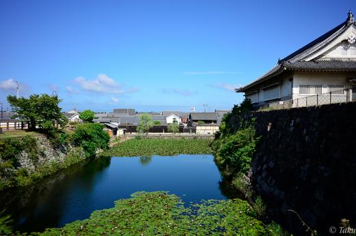 堀端から見た岸和田の街