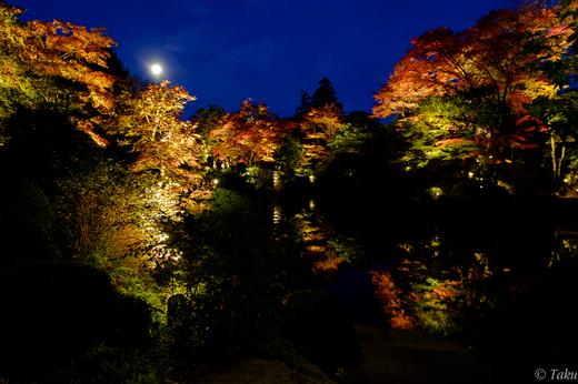 逍遥園の紅葉ライトアップ