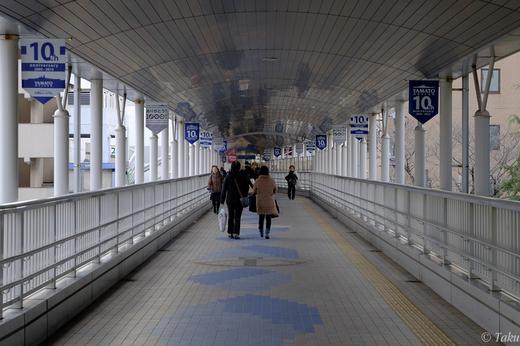 駅から港へ通じる歩道