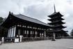 興福寺の東金堂と五重塔