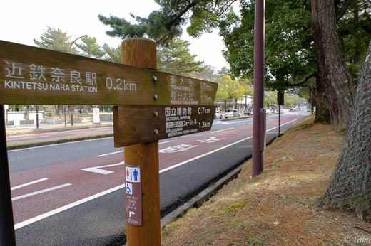 近鉄奈良駅から奈良公園へ向かう