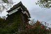 尾道城を見上げる