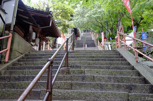 紀三井寺の階段