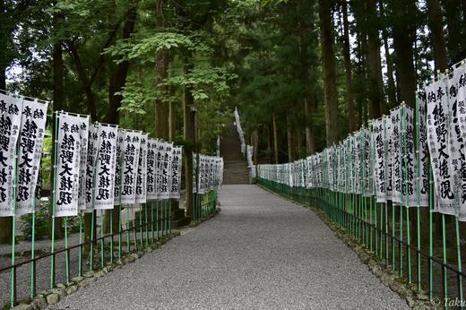 参道に並ぶ熊野大権現の旗竿