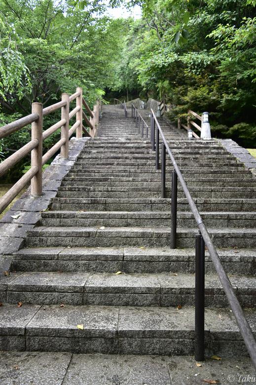丹鶴城(新宮城)跡へ続く階段