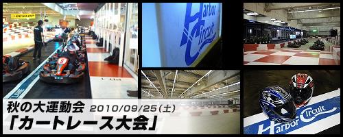 20100825_cart.jpg